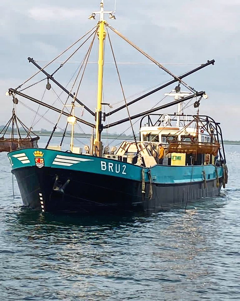 Oesterbaron.nl   een-nieuw-schip-de-bru-2