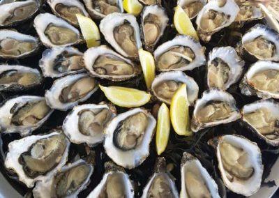oesterbaron rondvaarten oesters